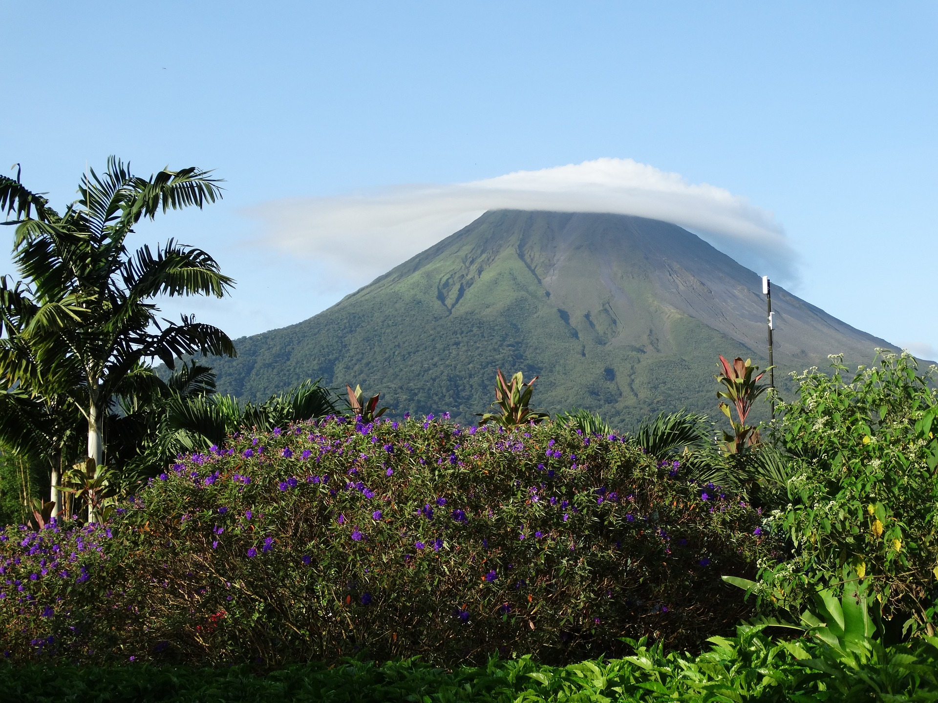 Sopka vyrůstá přímo z deštného pralesa